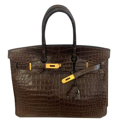 Crocodile  Birkin 35-0