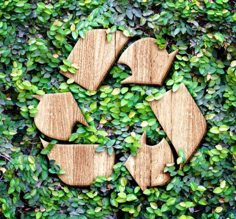 10 Top Tips on How to Recycle Properly